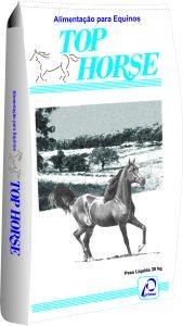 Top Horse