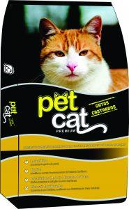 Pet Cat gatos castrados